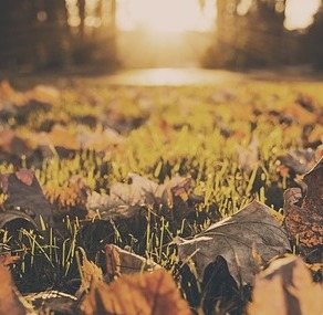 (Nietypowe) sposoby na jesienną-zimową chandrę